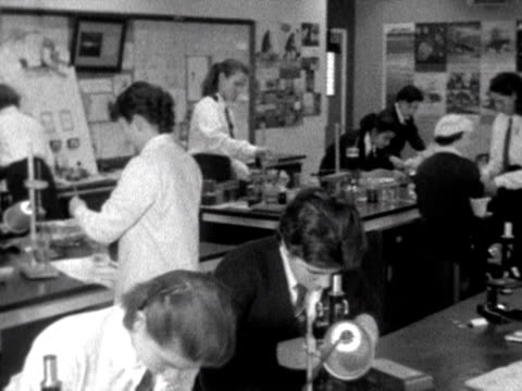 vidéos et rushes de girl looks into a microscope during a biology lesson. 1958. - biology