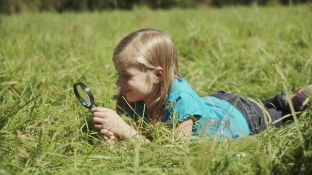 ms girl (8-9) lying in meadow and looking at grass through magnifying glass / hampton, new jersey, usa - magnifying glass stock videos & royalty-free footage