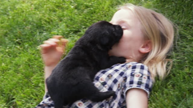 MS Girl (6-7) lying on grass with holding puppy / Sunderland, Vermont, USA