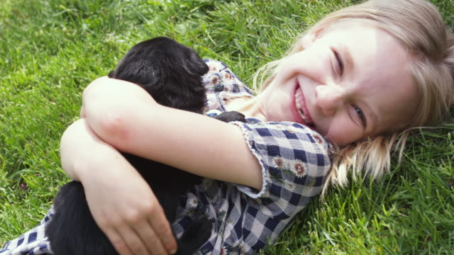 ms girl (6-7) lying on grass with holding puppy / sunderland, vermont, usa - 横たわる点の映像素材/bロール