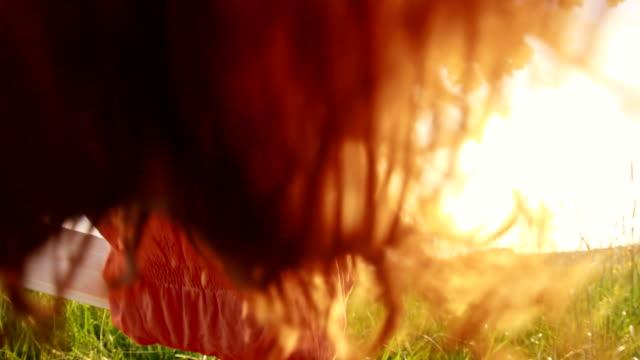 slo mo の少女スインギング裸足に揺れる木 - ブランコ点の映像素材/bロール