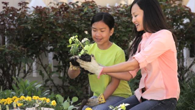 ms cu td girl planting organic vegetable with mother / richmond, virginia, united state - trädgårdshandske bildbanksvideor och videomaterial från bakom kulisserna