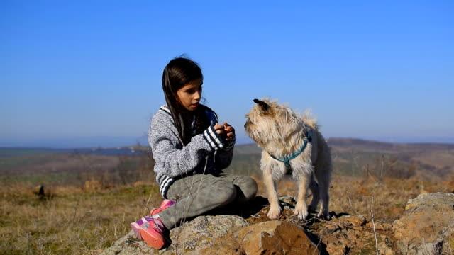 vídeos y material grabado en eventos de stock de niña juega con perro - estilo de música