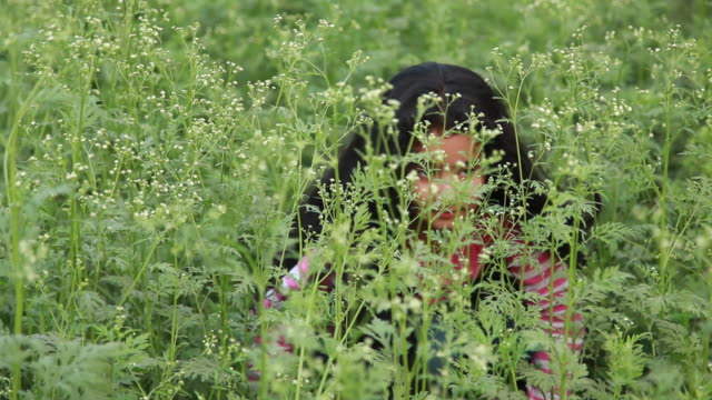 girl playing in the garden  - hide and seek stock videos and b-roll footage