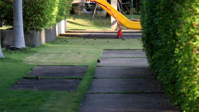 スイングを弾いている女の子 - 遊具点の映像素材/bロール