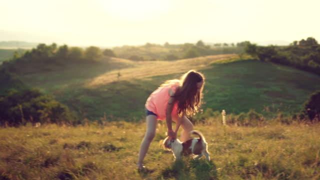 vidéos et rushes de fille jouant avec son chiot - chiot