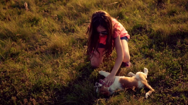女の子は彼女の子犬と遊ぶ - 10歳から11歳点の映像素材/bロール