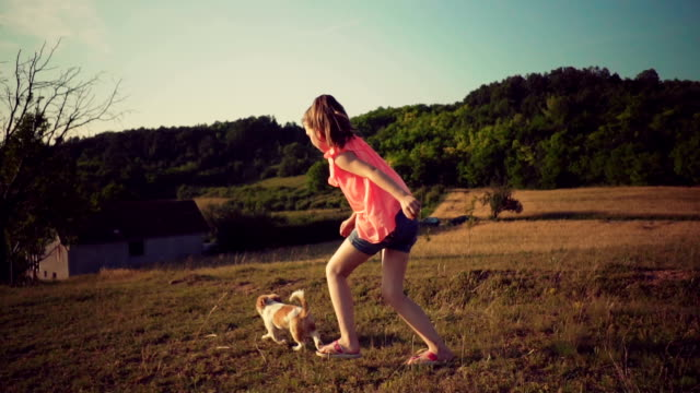 girl playing with her puppy - children only stock videos & royalty-free footage