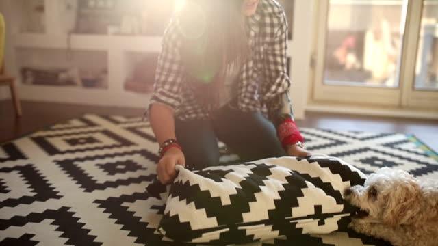 vídeos y material grabado en eventos de stock de chica jugando con el perrito maltés - alfombra