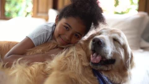 vídeos y material grabado en eventos de stock de chica jugando con el perro en la cama - mascota
