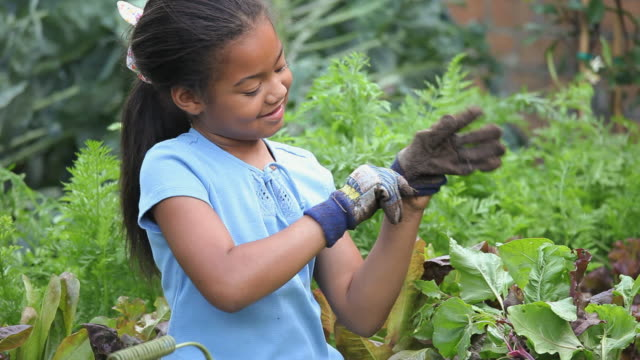 MS Girl (8-9) putting on gardening gloves in garden, Richmond, Virginia, USA