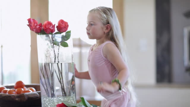 ms girl putting roses in vase / lamy, new mexico, usa - medium group of objects stock videos & royalty-free footage