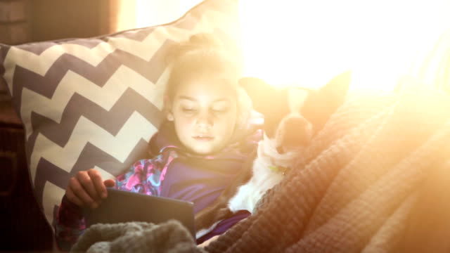 girl reading on tablet with her boston terrier - blanket stock videos and b-roll footage