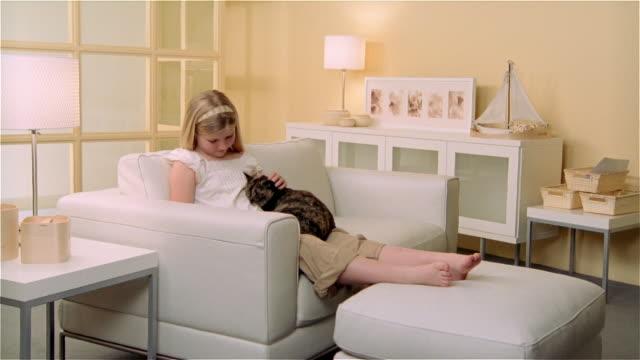 vídeos y material grabado en eventos de stock de ms, girl (8-9) reclining on sofa and stroking calico cat - en el regazo