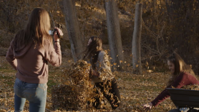 girl recording playful friends throwing autumn leaves at each other / cedar hills, utah, united states - dreiviertelansicht stock-videos und b-roll-filmmaterial
