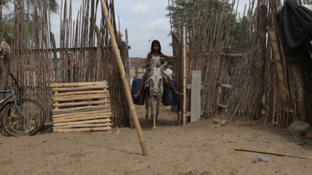 Girl riding a donkey carrying water canisters inside a poor courtyard