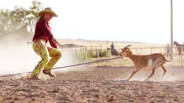 vídeos de stock, filmes e b-roll de garota rodeio bode amarrando - montar um animal