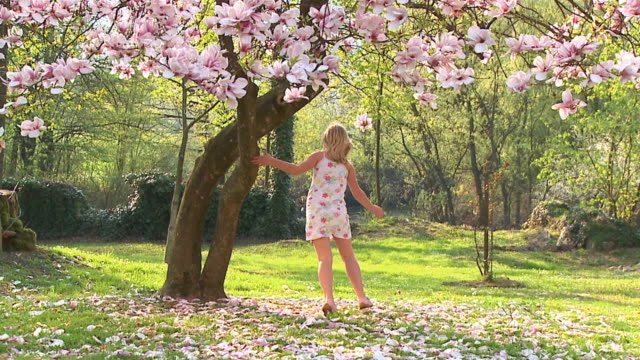 slo mo ws girl (8-9) running around magnolia tree, vrhnika, slovenia - vrhnika stock videos & royalty-free footage