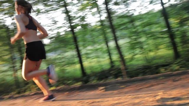 girl running at sunset in forest - joggerin stock-videos und b-roll-filmmaterial