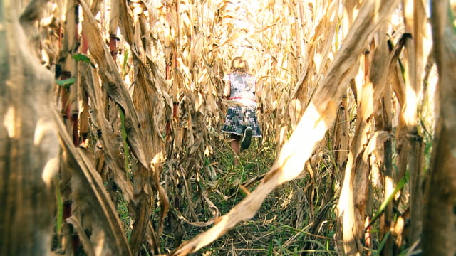 HD SLOW MOTION: Girl Running In Corn Field