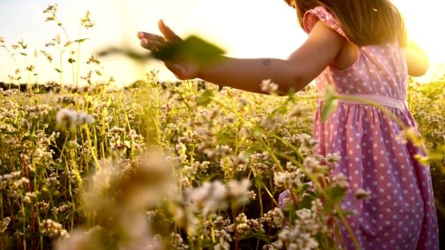 SLO MO Girl running in the buckwheat field at sunset
