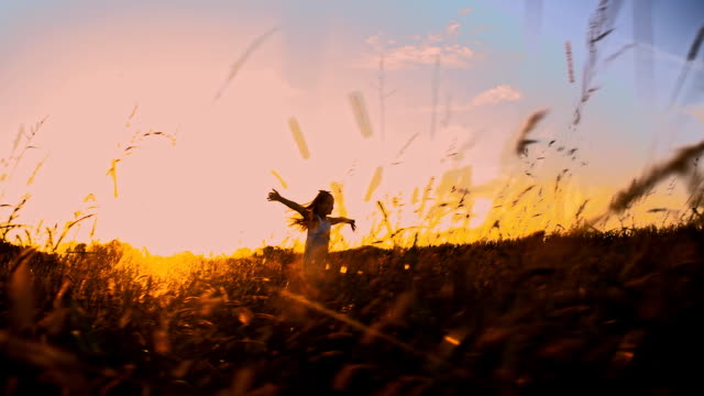 slo mo girl running in the grass - silhouette stock videos & royalty-free footage