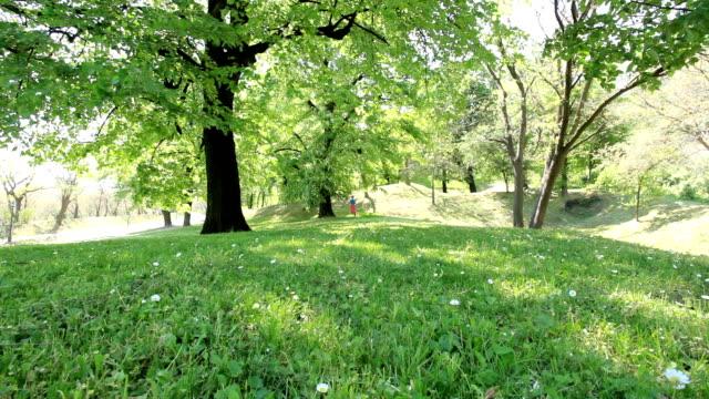 vidéos et rushes de fille courir dans le parc verdoyant. - en individuel