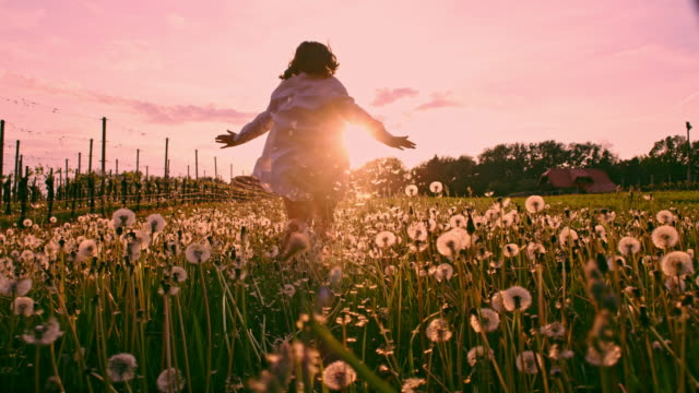 slo mo la ts girl running through the meadow full of dandelions at sunset - arms raised stock videos & royalty-free footage