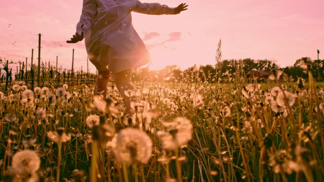 SLO MO LA TS Girl running with arms outstretched through dandelions at sunset