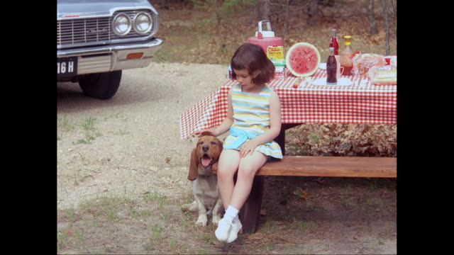 vídeos de stock e filmes b-roll de ms girl sitting at picnic table petting dog / united states - acariciar