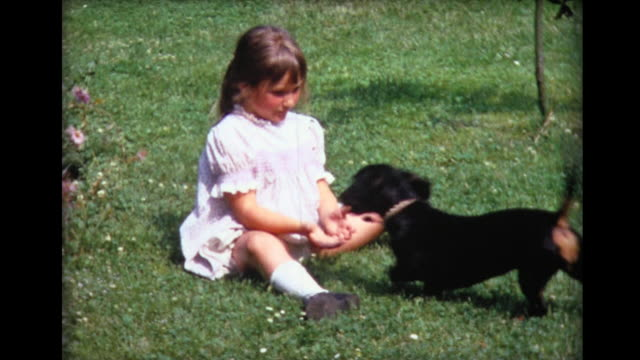 vidéos et rushes de 1967 girl sitting in grass plays ball with dog - young animal