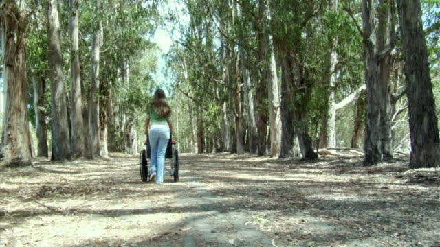 ms, ws, girl (6-7) sitting in wheelchair in eucalyptus forest, girl (14-15) greeting her and pushing wheelchair along dirt road, richmond, california, usa - wheelchair stock videos and b-roll footage