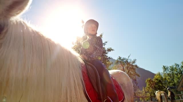 vídeos de stock, filmes e b-roll de menina sentada em um cavalo no sol na fazenda - young animal