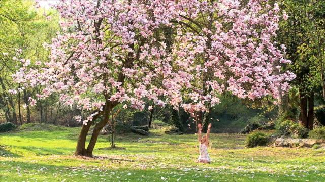 ws girl (8-9) sitting under magnolia tree, throwing flower petals in air, vrhnika, slovenia - vrhnika stock videos & royalty-free footage