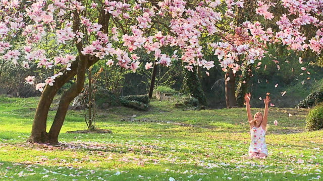 slo mo ws girl (8-9) sitting under magnolia tree, throwing flower petals in air, vrhnika, slovenia - vrhnika stock videos & royalty-free footage