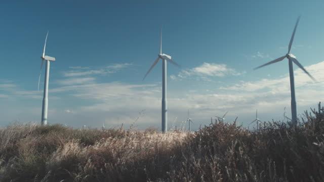ws girl skipping through field in front of wind turbines / zillah, washington, usa   - mellanstor grupp av objekt bildbanksvideor och videomaterial från bakom kulisserna