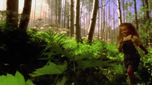 vídeos de stock, filmes e b-roll de girl skipping through lush forest holding flowers / aspen, colorado - sparklondon