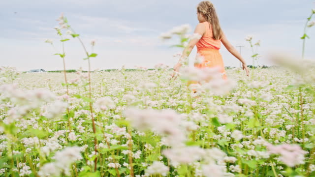 slo mo girl spinning in the middle of buckwheat field - buckwheat stock videos & royalty-free footage