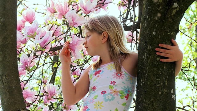 SLO MO MS Girl (8-9) standing at tree, smelling magnolia flower, Vrhnika, Slovenia