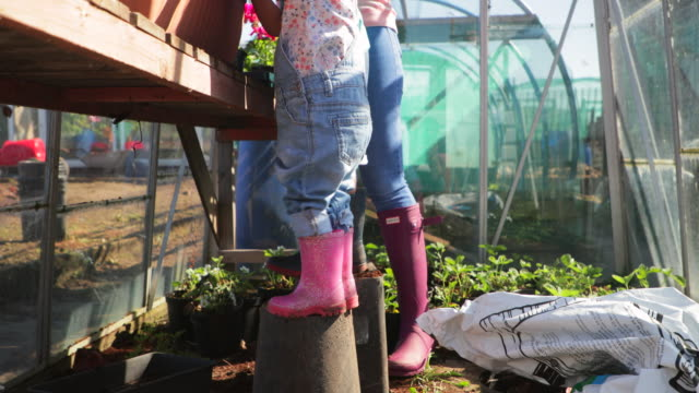 girl standing on box - community garden stock videos & royalty-free footage