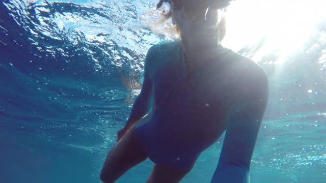 girl swimming underwater in snorkle gear and a wetsuit - turtle bay hawaii stock videos and b-roll footage