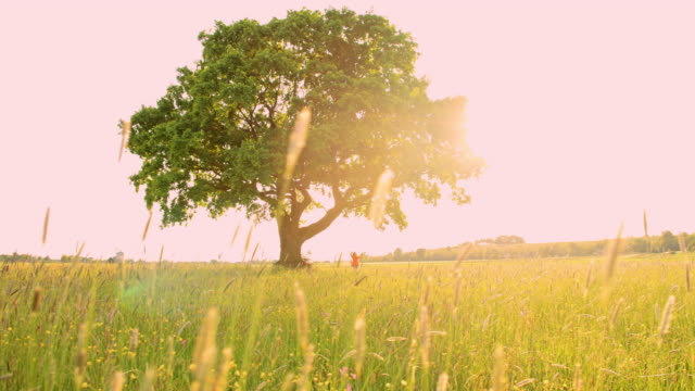 girl スインギングの真ん中にある草地 - ブランコ点の映像素材/bロール