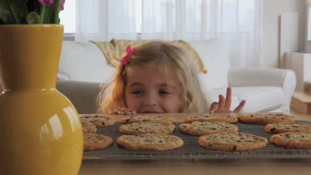 vidéos et rushes de ms girl (4-5) taking cookie from cooling rack / jersey city, new jersey, usa - atteindre
