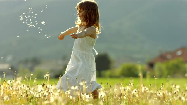 super slo-mo girl throwing dandelion seeds - dress stock videos & royalty-free footage