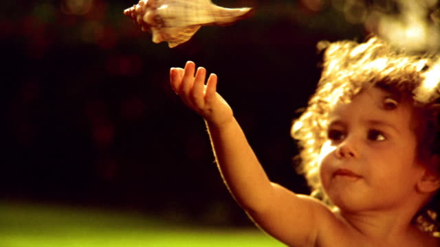 girl toddler with curly hair reaching for large seashell hanging above her head outdoors / hawaii - animal shell stock videos & royalty-free footage