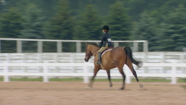 Girl training a horse to jump