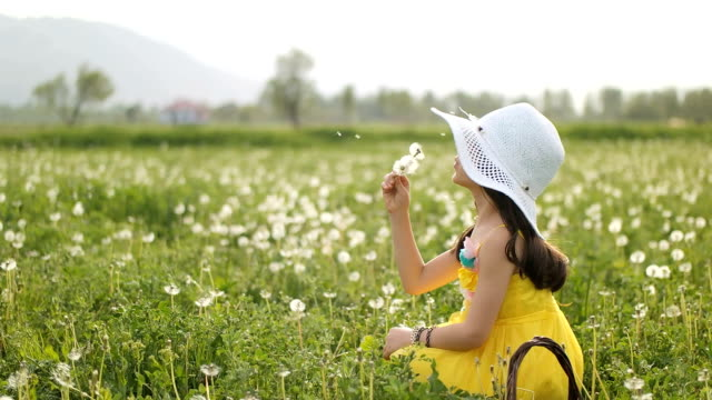 slo-mo girl twirling with dandelion seeds - tranquil scene stock videos & royalty-free footage