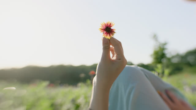 cu slo mo. girl twirls flower in hand in sunny field. - fragility stock videos & royalty-free footage