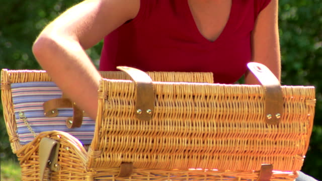 girl unpacking a picnic basket - see other clips from this shoot 1428 stock videos & royalty-free footage