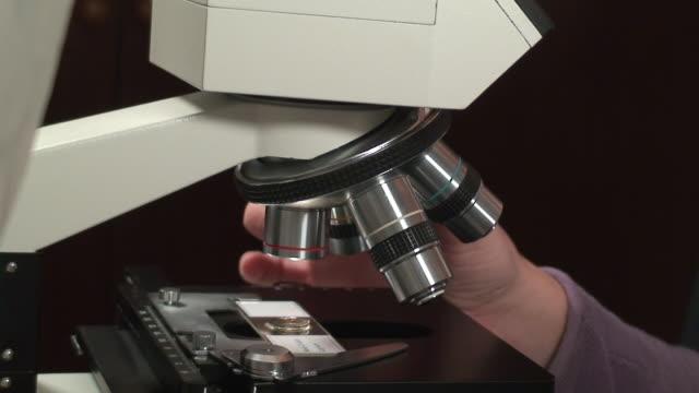 、顕微鏡を使用してガール - high scale magnification点の映像素材/bロール